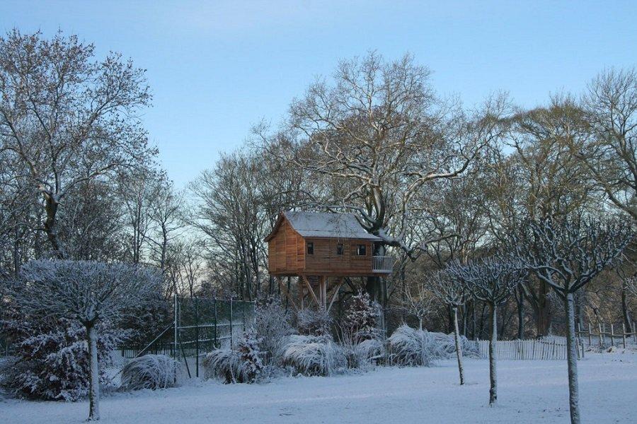 Домик на дереве в Бельгии